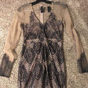 New! Cream and Black TOBI Dress